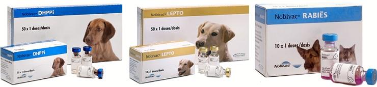 вакцина Nobivac